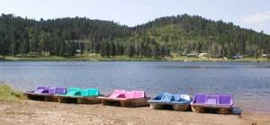 PaddleBoats1